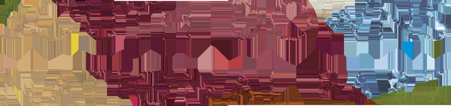 https://sota.co.uk/wp-content/uploads/RS12150_SDNP-Logo-Medium.png